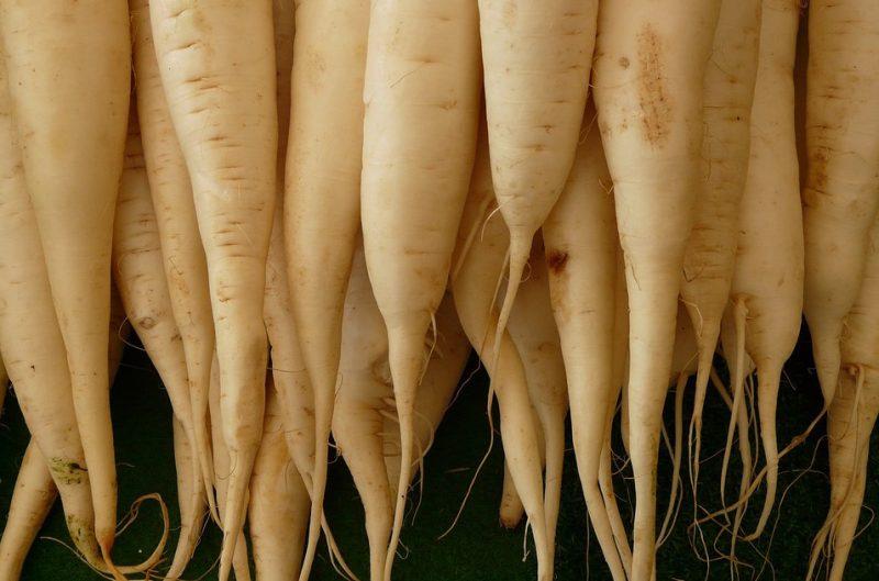 white-radish-5756_960_720-2